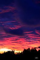 Hot Pink Heavens by Momenti-Photo