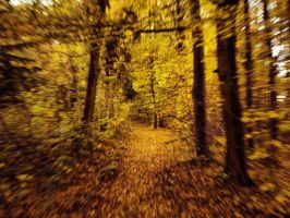 Autumn path 2 by FrantisekSpurny