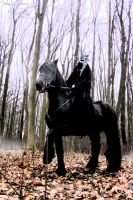 The Nazgul came again by PhotoNovotna
