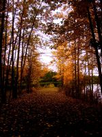Fall Is Upon Us by Vethonwen