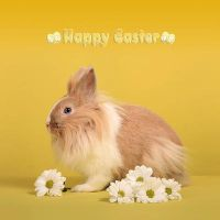 Hoppy Easter by LadyCarnal