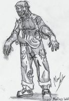 Zombie Types-Mindless Walker by xenomorph01