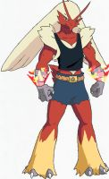 Torch, the Blaziken-X by Makoim