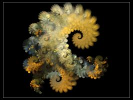 Abstract Octopus by Overtone