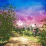 The Path Home by oldhippieart