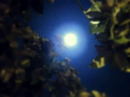 Blue Moon by Neneplayswithpaper
