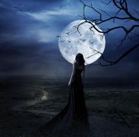 under the moon by PlacidAnemia