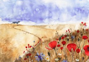 Poppies are silent companions by Forestia