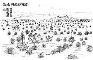 The Desert South of Tolman by conciliarityoftepat