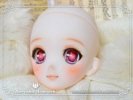 2013.09 Volks DDH06 by SorenkaArtwork