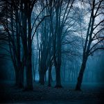Into the Blues by HorstSchmier
