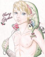 Merry Christmas from Link by KannaMay