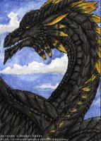 ACEO - Orkano by 8TwilightAngel8