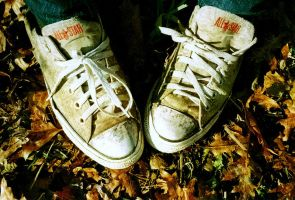 shoes in leaves by Minga