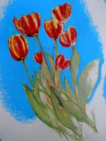 Tulips for my Mother by DVanDyk