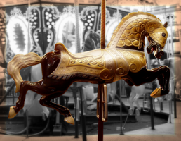 Carousel by agreydaisy