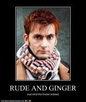 Rude and Ginger by Timelord-Doctor