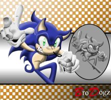 Commission : Sonic The Hedgehog - Next Level Asset by BroDogz