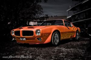 The Orange Bird by AmericanMuscle