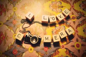 i love cameras II by Holunder