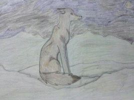 wolf in the snow by cocobeanc