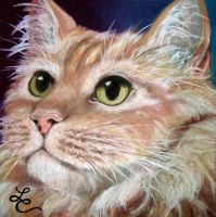 'Whiskey' by lisachristopherson