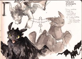 More Toothless Sketches by Dreamsoffools