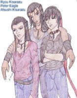 N Color. Ryou, Peter, Atsushi by HieiSQueen