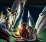 Stories by the Camp Fire by Birvan