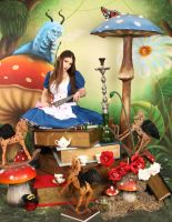 American McGee's Alice Garden 4 by ThePrincessNightmare