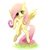 Fluttershy by quizia
