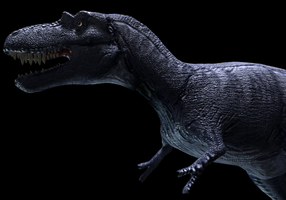 Albertosaurus 3D model WIP by Sketchy-raptor