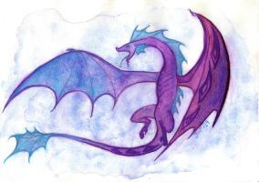 Dragon by MissPoe