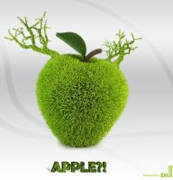 Green apple by iheb003