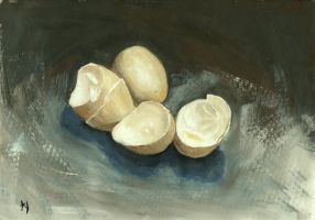 Egg  Shells by h-i-l-e-x