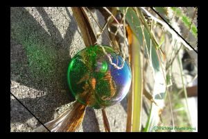Experiment-Glass and Light 6 by Skullchick