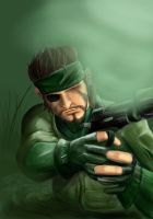 Metal Gear Solid 3: SE by RavenOM