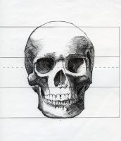 Skull drawing front view by michaeldaviniart