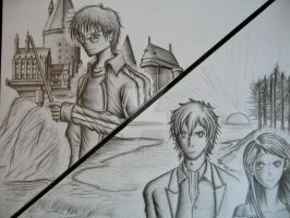 Harry Potter VS Twilight by wolyhong