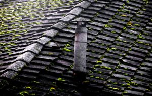 Old Roof by tortagel