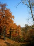Fall in the Valley 1 by Thy-Darkest-Hour
