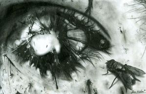 Eye of Decay by PyramidHeadxXx