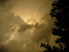 Sepia Skies I by JustCin
