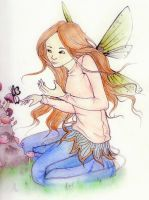 Fairy by moochersrosty