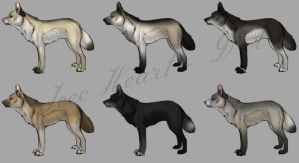 Wolf adoptables -1 LEFT by IceeHeart