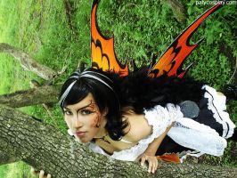 FAIRY, Butterfly Monarch by patycosplay