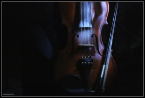 Fiddle- Violin- In the Dark by markbrmb