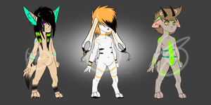 Anthro Set (Auction) by MuteAdopts