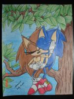 Sonic'n_Sonar_In_A_Tree by Sonar15