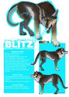 Blitz Reference Sheet by wylieblais